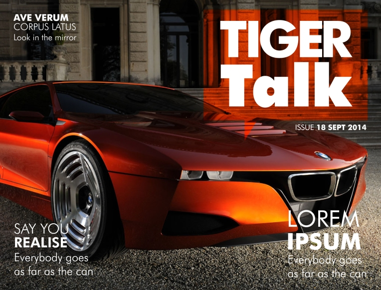 TigerTalk